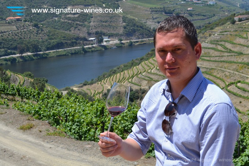 Is Global Warming Helping the Wine Industry?