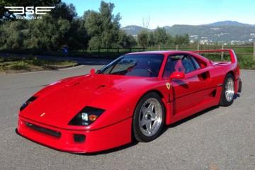 Ferrari F40 CAT 1991